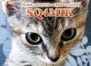 image of sq4mik