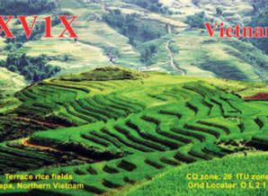 image of xv1x